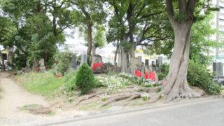 尼崎市北難波墓地の写真